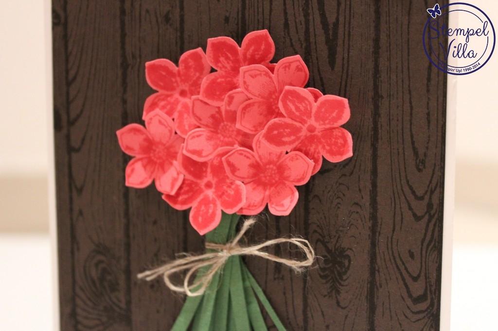 Sag´s mit Blumen